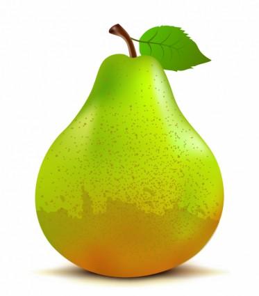 Vector Ca Clip Art Download. Pear Clipart