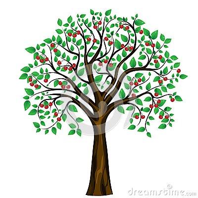 Vector Cherry Tree On White .-Vector Cherry Tree On White .-19