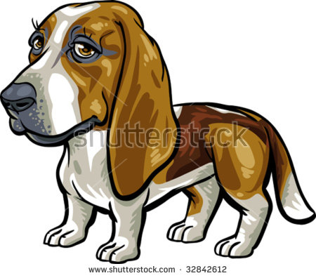 Vector, clip art, caricature illustration of Basset Hound dog. Hand drawn artwork in