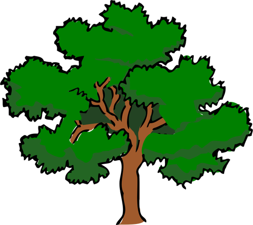 Vector clip art of oaktree with wide treetop,