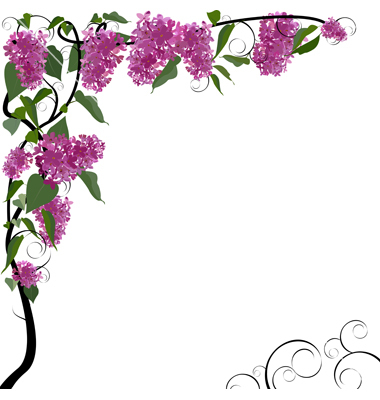 46 Floral Border Clipart Clipartlook