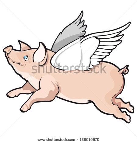 Vector illustration of flying pig