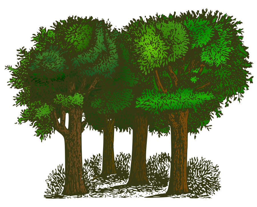 Vector Trees Free | Free Download Clip Art | Free Clip Art | on .