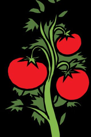 Vegetable Garden Clipart-vegetable garden clipart-4