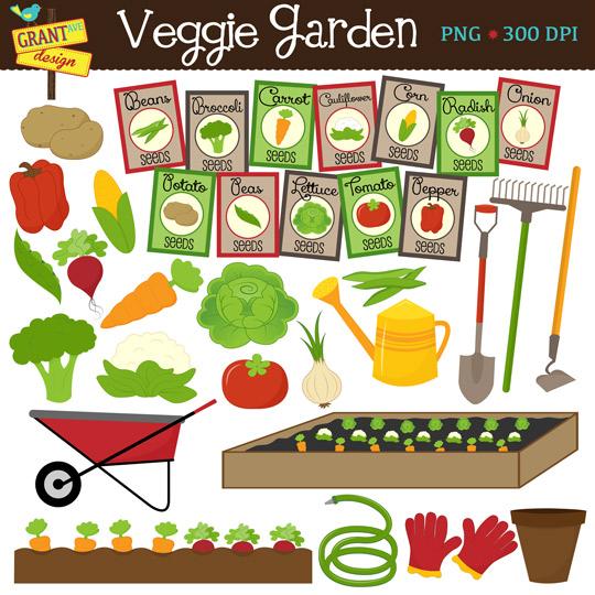 Vegetable Clipart Garden .-Vegetable Clipart Garden .-13