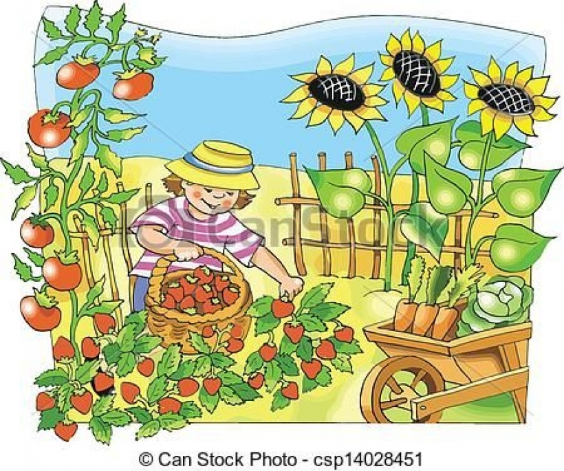 veggie garden clipart vegetable garden clip art google search plants and gardening