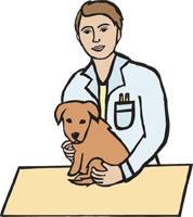 Veterinarian Clip Art Pets