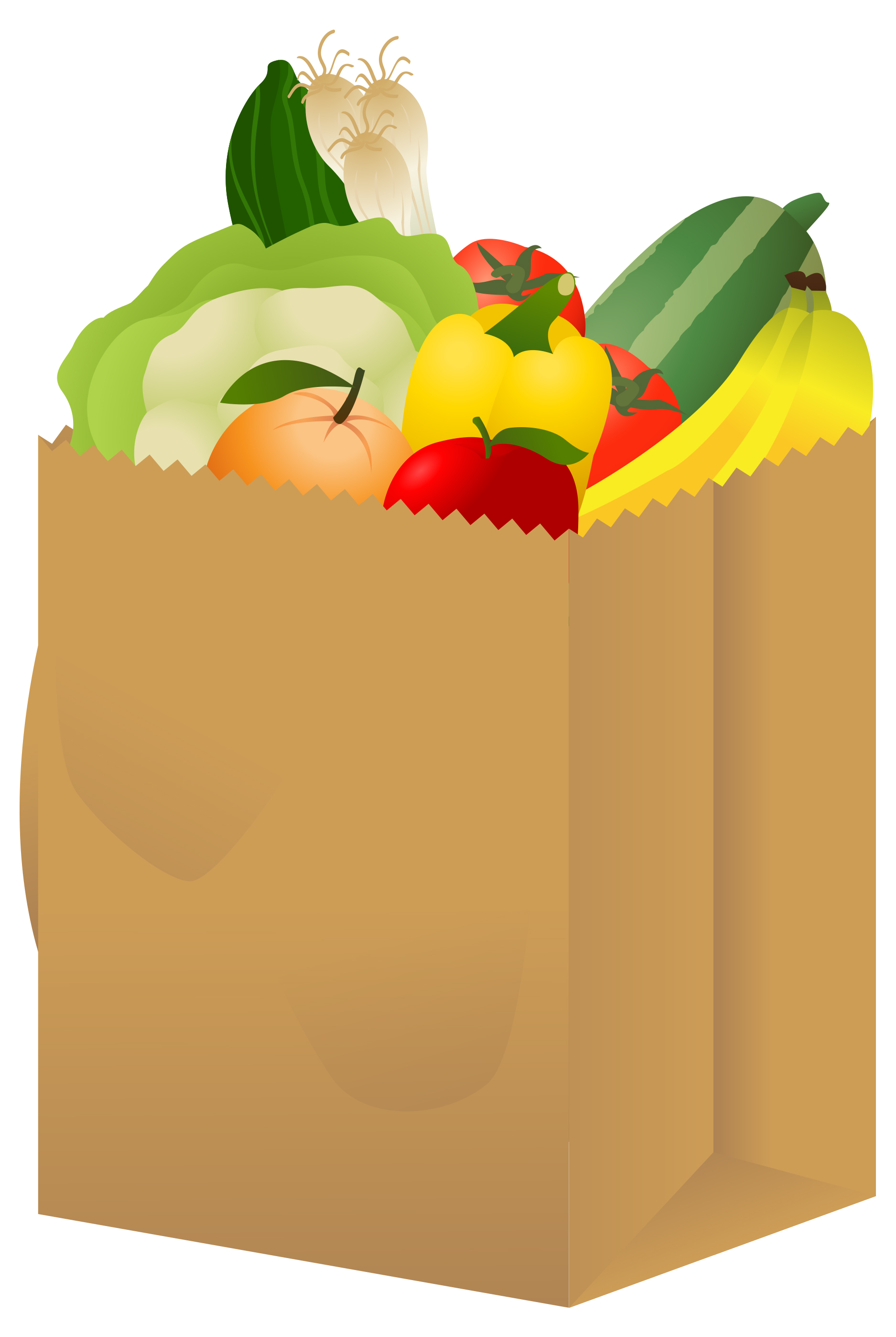 View Grocery Bag Jpg Clipart Free Nutrit-View Grocery Bag Jpg Clipart Free Nutrition And Healthy Food Clipart-17