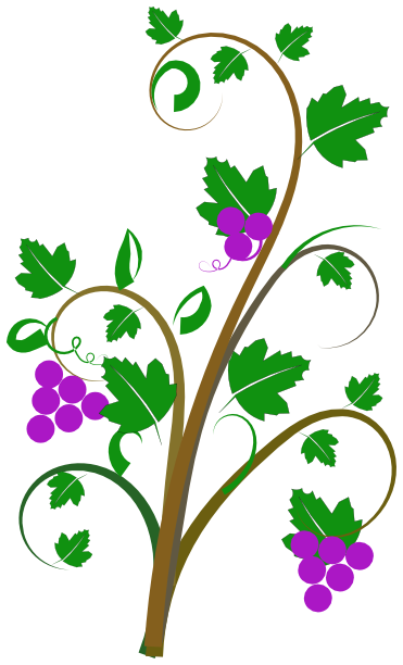 Vine Clip Art Http Www Wpclipart Com Pla-Vine Clip Art Http Www Wpclipart Com Plants Assorted V Vine Clip-14
