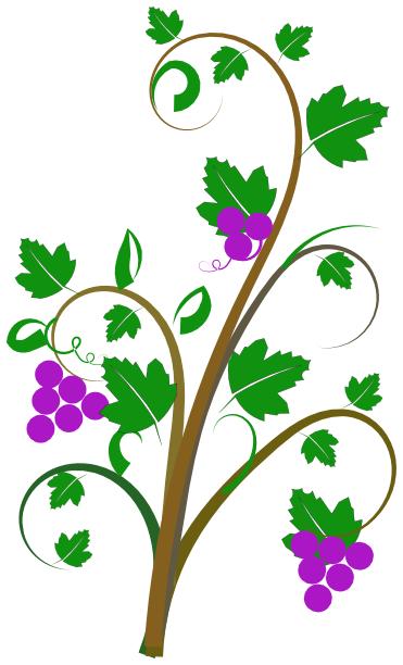 Vine Clip Art Http Www Wpclipart Com Pla-Vine Clip Art Http Www Wpclipart Com Plants Assorted V Vine Clip-12