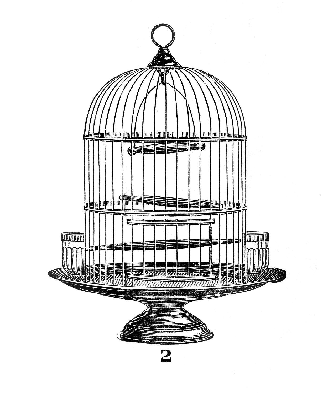 Vintage Clip Art U2013 Victorian Bird Ca-Vintage Clip Art u2013 Victorian Bird Cage-1