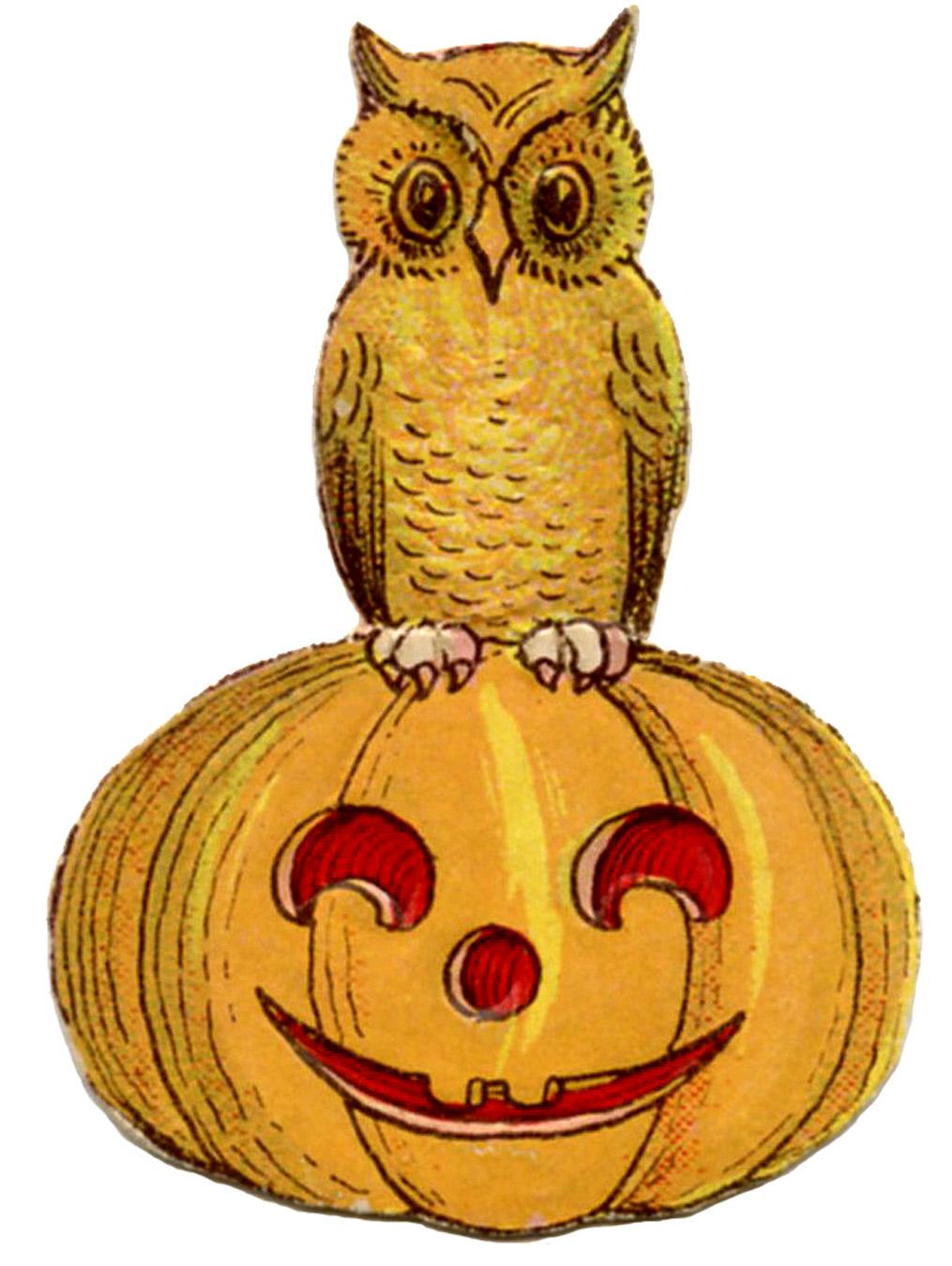 Vintage Halloween Clip Art U2013 Cute Ow-Vintage Halloween Clip Art u2013 Cute Owl on Pumpkin-11