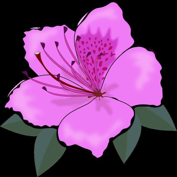 Violet Purple Flower Clip Art