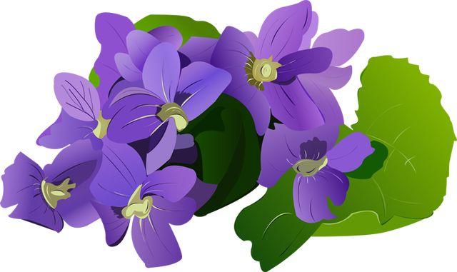 Violet Purple Flower Clip Art-Violet Purple Flower Clip Art-6