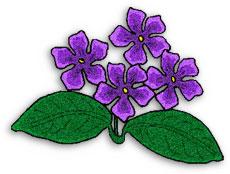 Violets Clip Art. Free .