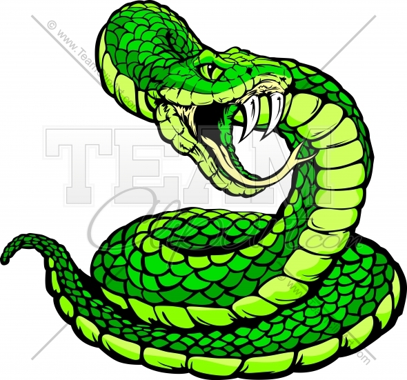 Viper Or Coiled Snake Body Vector Clipar-Viper Or Coiled Snake Body Vector Clipart Image Team Clipart Com-8