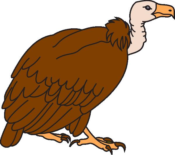 vulture clipart-vulture clipart-0