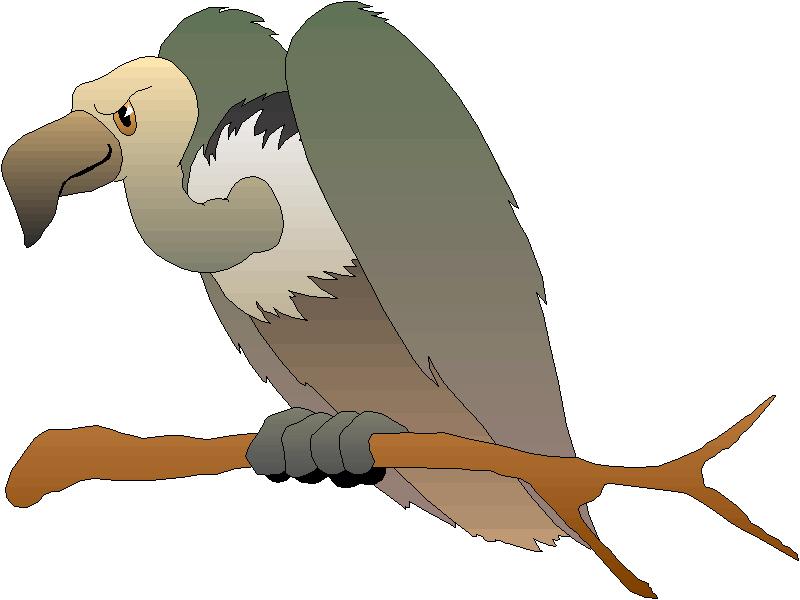 Vulture Clipart-Vulture Clipart-2