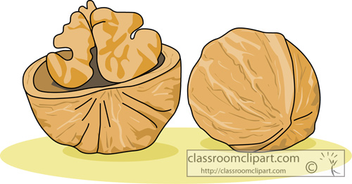 Walnut Clipart-Clipartlook.com-500-Walnut Clipart-Clipartlook.com-500-0