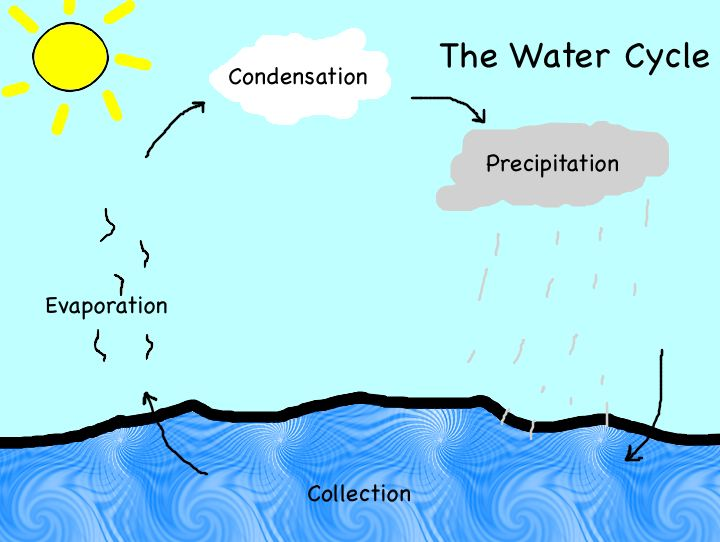 Water Cycle Classroom . Pictu - Water Cycle Clip Art