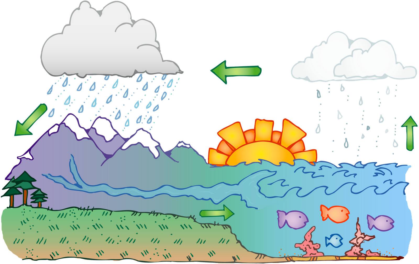 Water Cycle Classroom . - Water Cycle Clipart