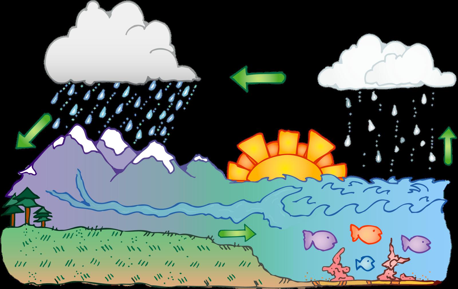Water Cycle Classroom .-Water Cycle Classroom .-11