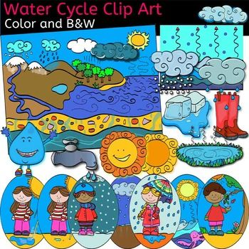 Water Cycle Clip Art Set Includes Images-Water Cycle clip art set includes images for : u2022Clouds u2022Evaporation1 u2022Evaporation2 u2022-12