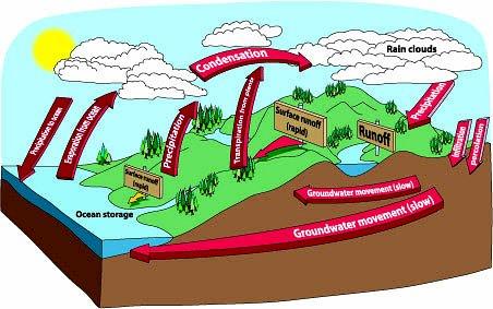 Water-cycle.jpg-water-cycle.jpg-18