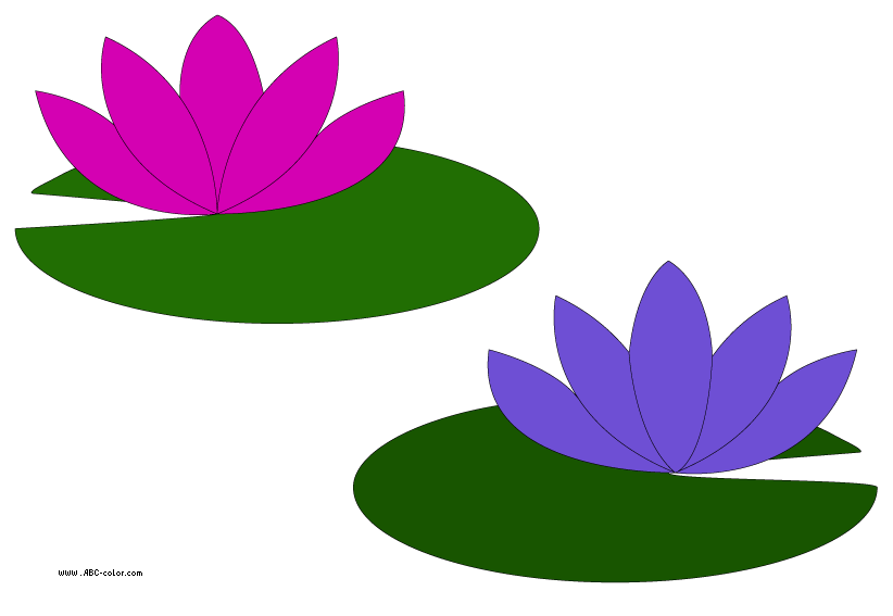 Water Lily Clipart-Clipartlook.com-822