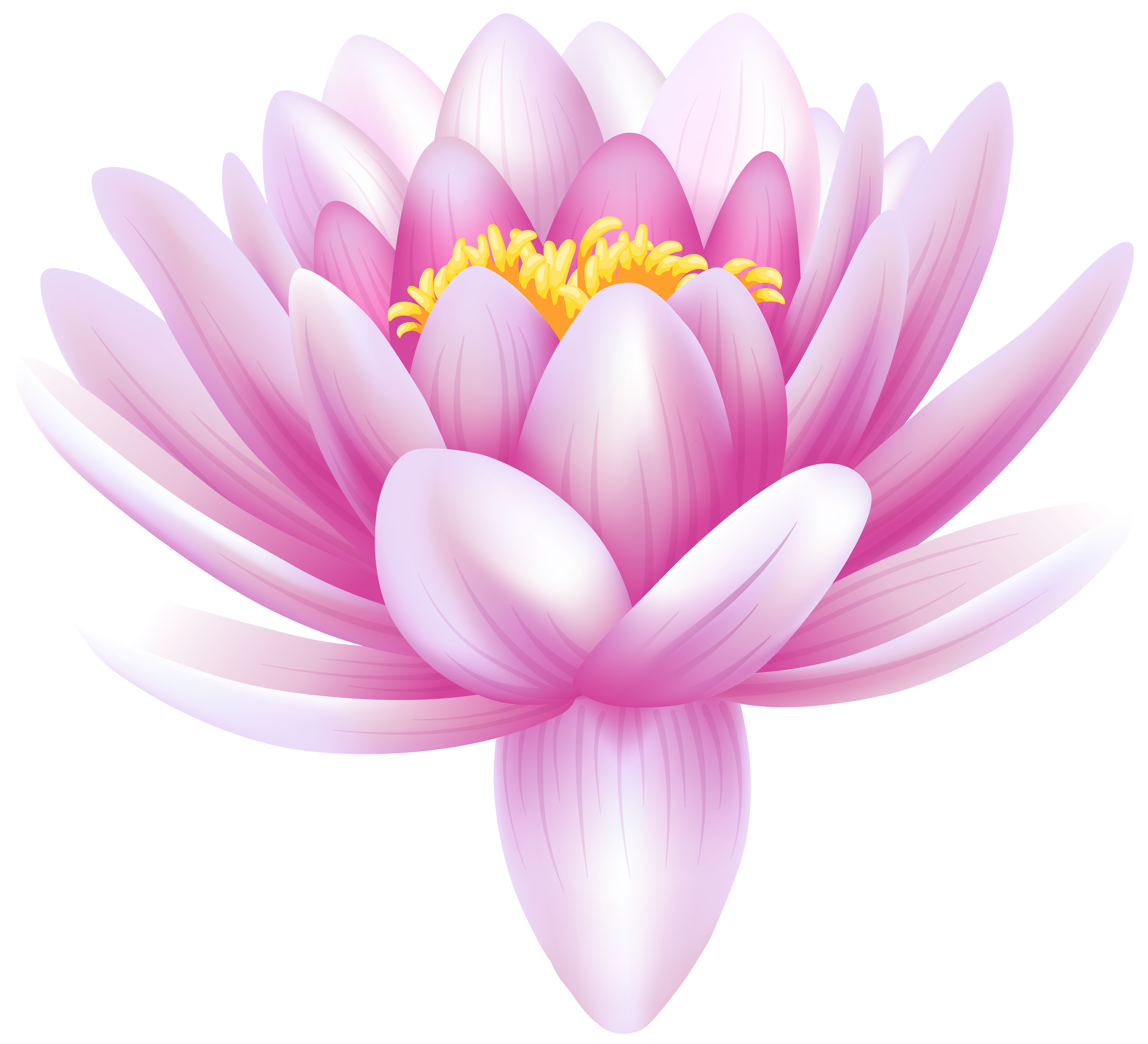 Water Lily Transparent PNG Clip Art Image Gallery Yopriceville Within Lilies
