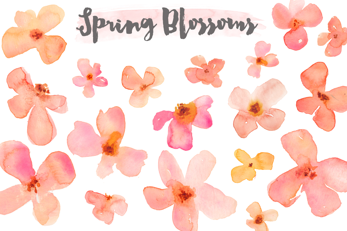 Watercolor Clipart u2013 Spring Flower Blossoms