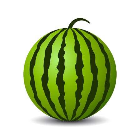 Round watermelon vector icon-Round watermelon vector icon-15