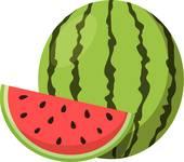 Watermelon icon vecotr illustration; Wat-Watermelon icon vecotr illustration; Watermelon.-3