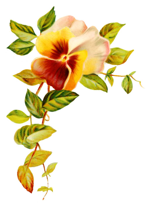 wedding clipart pansy and leaves ClipartLook.com