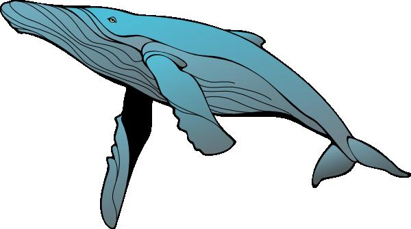 Whale Clip Art At Clker Com Vector Clip -Whale Clip Art At Clker Com Vector Clip Art Online Royalty Free-13