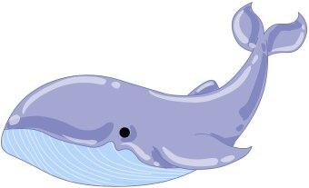 Whale Clip Art-Whale Clip Art-11