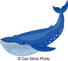 ... Whale