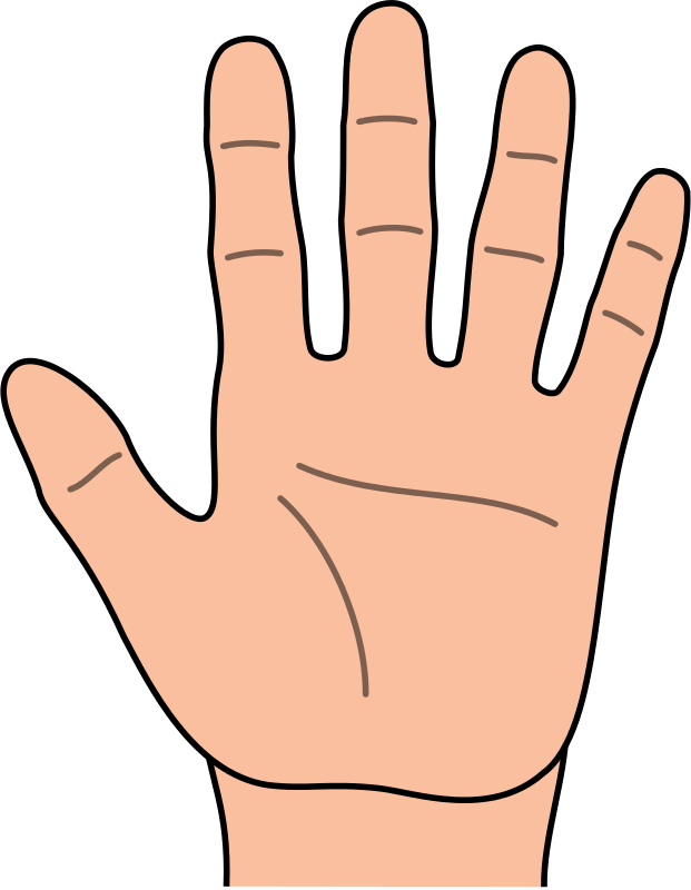What do the 5 fingers in india represent?