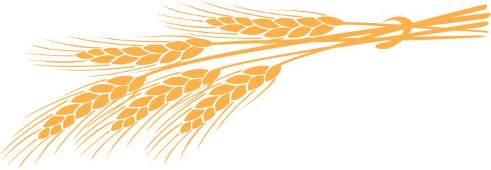 ... Wheat Clip Art - clipartall ...