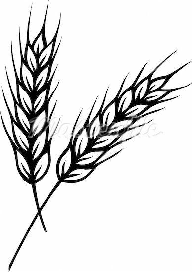 wheat clipart - Google Search