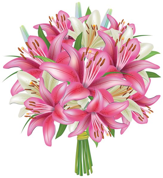 White And Pink Lilies Flowers Bouquet PN-White and Pink Lilies Flowers Bouquet PNG Clipart Image-19