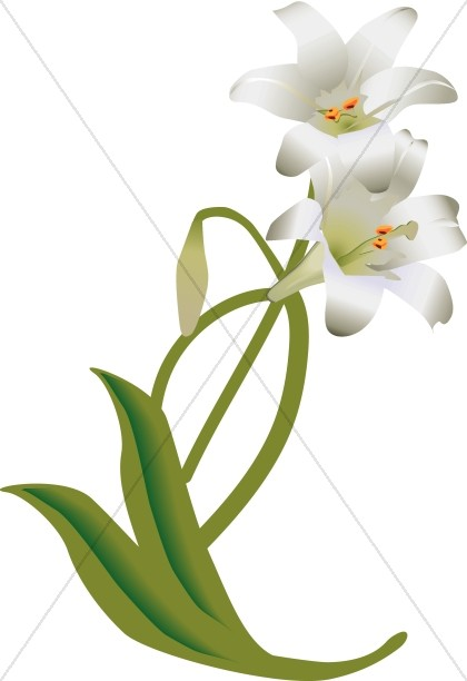 White Easter Lily Decoration-White Easter Lily Decoration-17