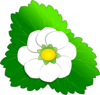 White flower clip art Free vector for free download (about 146 files).