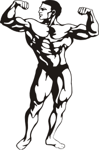 white muscle man clip art .