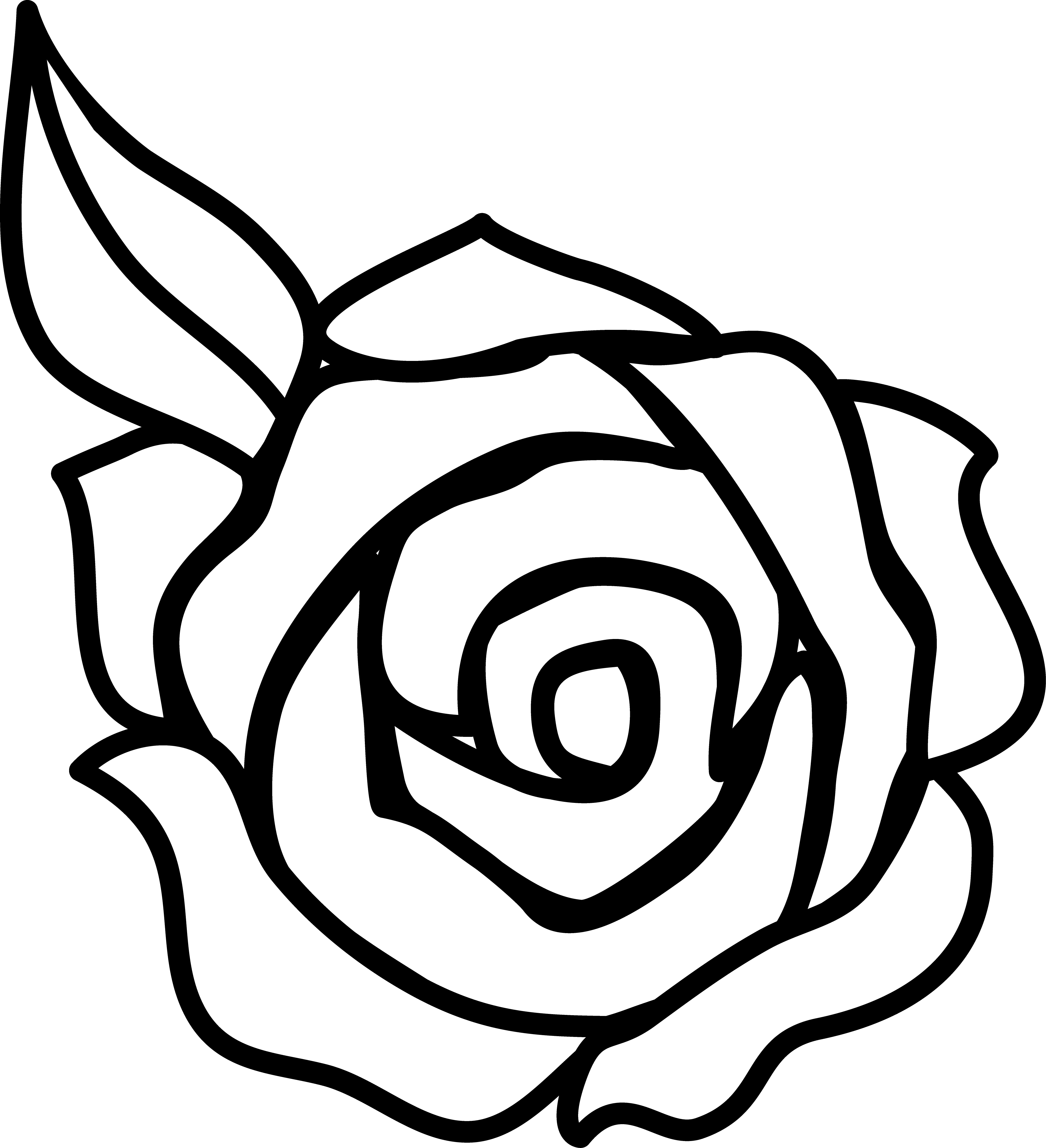 White Rose Clipart-Clipartlook.com-4042-White Rose Clipart-Clipartlook.com-4042-0