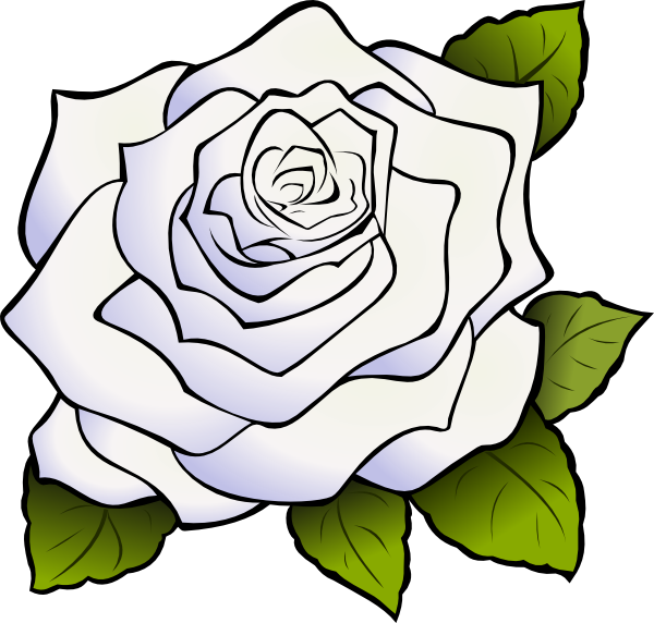 Download this image as: - White Rose Clipart