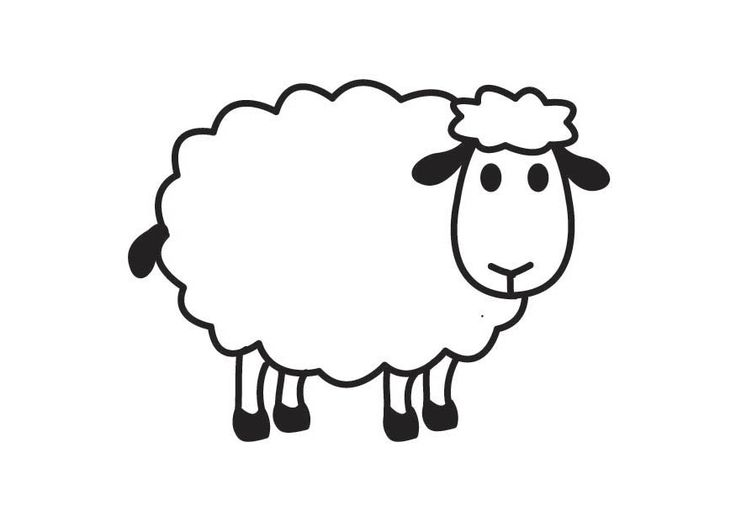 White Sheep Clipart Free .-White sheep clipart free .-19