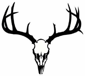 Whitetail Deer Clipart-Whitetail Deer Clipart-17