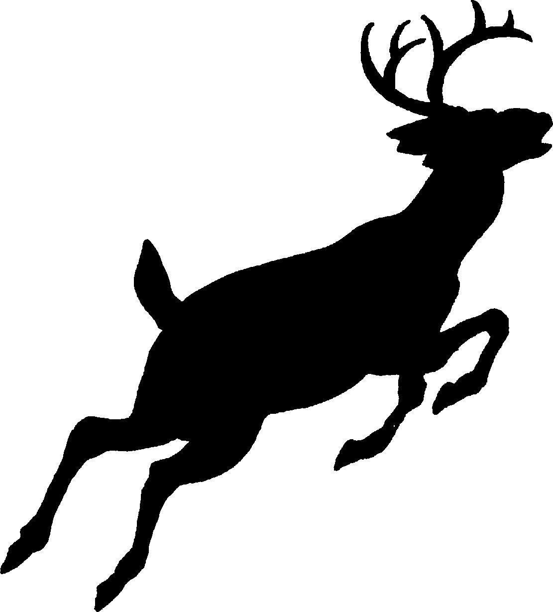 Whitetail Deer Clipart u0026middot; buck clipart u0026middot; buck clipart