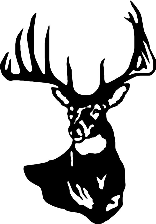 Whitetail deer head clipart - ClipartFes-Whitetail deer head clipart - ClipartFest-15